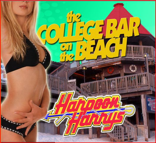 nightlife in panama city beach - Harpoon Harry's - Panama City Beach